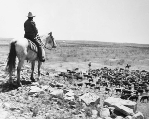 Encyclopedia of the Great Plains | CATTLE RANCHING